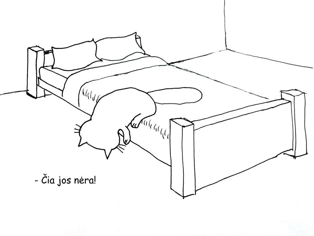 Paveiksliukas, kuriame katinas po lova ieško Mūzos, bet nelabai jam sekasi